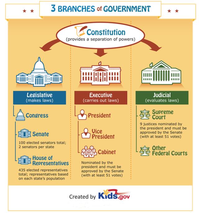 federal level diagram
